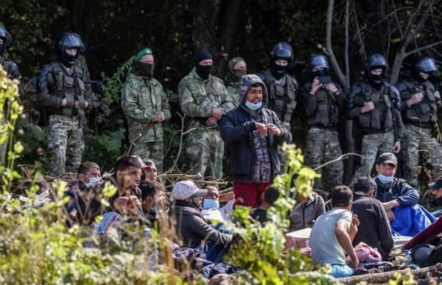 За сутки в Польшу со стороны Беларуси пытались попасть 537 мигрантов