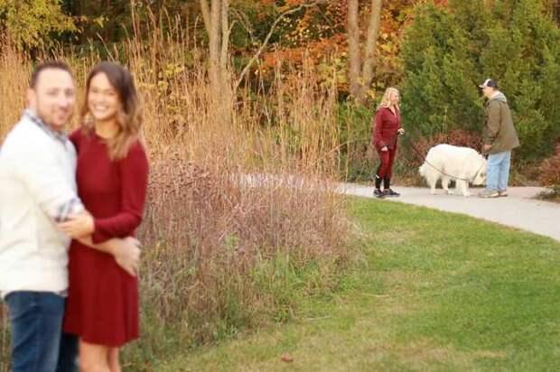 Фотографируя родственников, девушка увидела позади них собаку и увлеклась