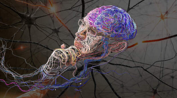 Российские ученые ускорили работу нейросети по распознаванию изображений