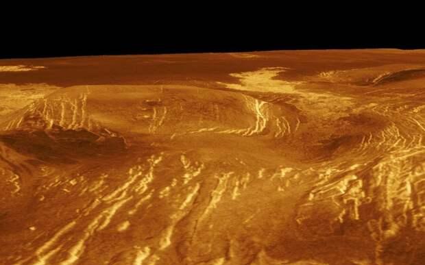 Там кто-то шевелится. На Венере нашли 18 живых существ