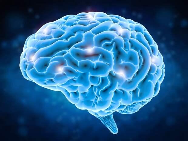 Самые тяжелые инфекции коронавируса начинаются в мозге, а не в легких