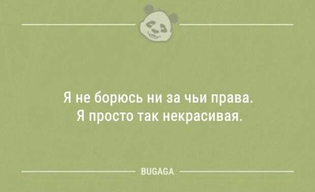 Анекдоты для настроения (12 шт)