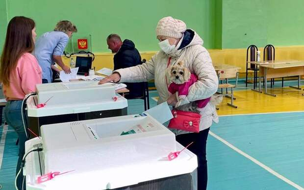 В Рязанской области обработали 70% протоколов выборов в Госдуму