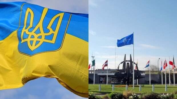 Киевский политолог Олещук рассказал об отказе НАТО принимать Украину