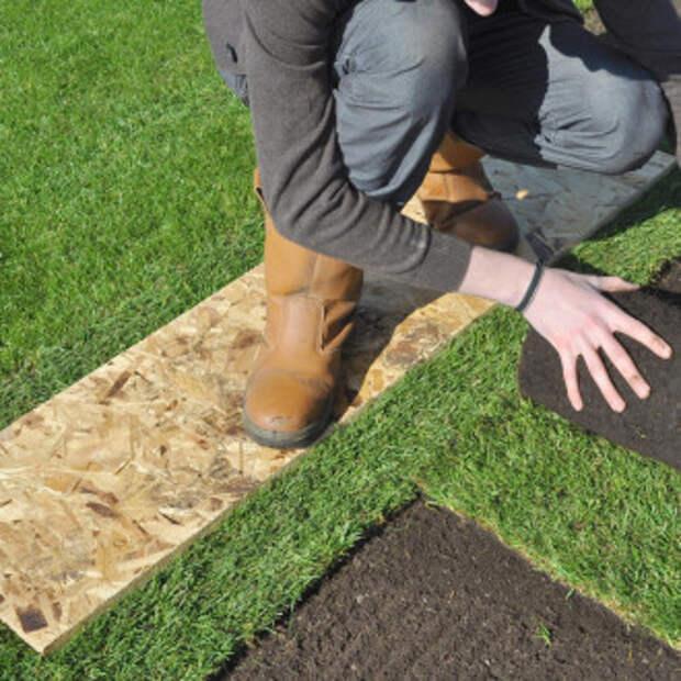 Укладка рулонного газона: технология и уход