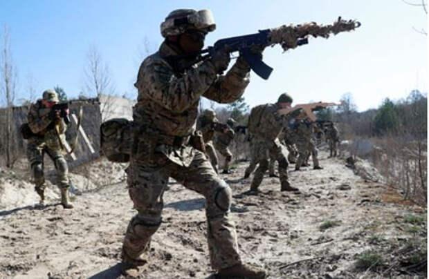 На Украине рассказали об испуге Германии и Франции от военной мощи Киева