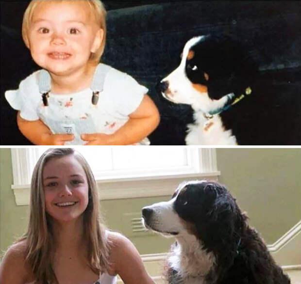 Девочка с собакой до и после, друзья, собаки, фото