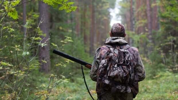 Власти разрешили охотиться на заповедных землях в Красноярском крае