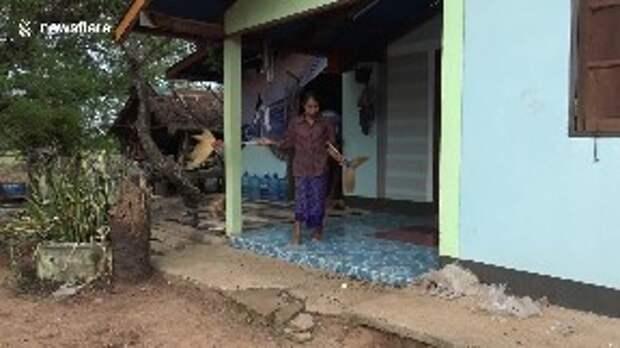 Тысячи гусениц вынудили женщину уйти из дома