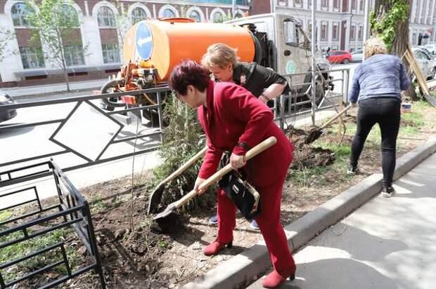 У дома, где жил Герой Советского Союза Александр Ямщиков, высадили 25 кустов тамарикса