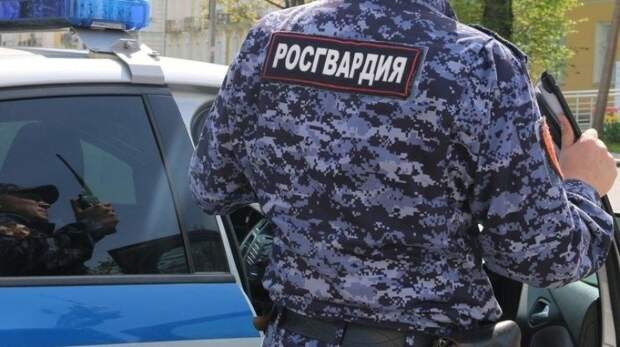 Подозреваемые в краже телефона у посетителя бара задержаны в Северодвинске