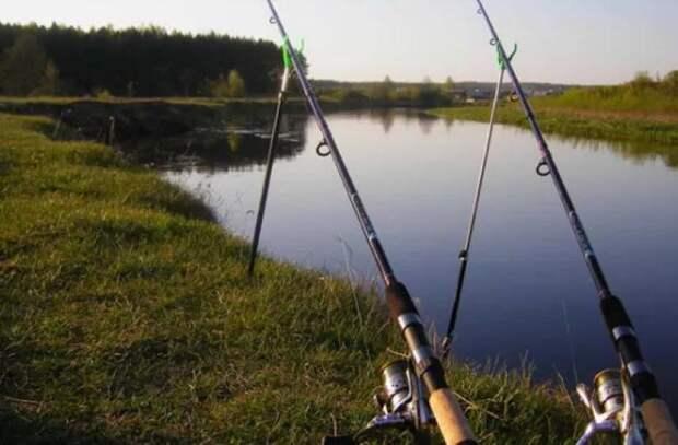 Хорошая новость для рыболовов: С 16 мая разрешена ловля дунайской скумбрии