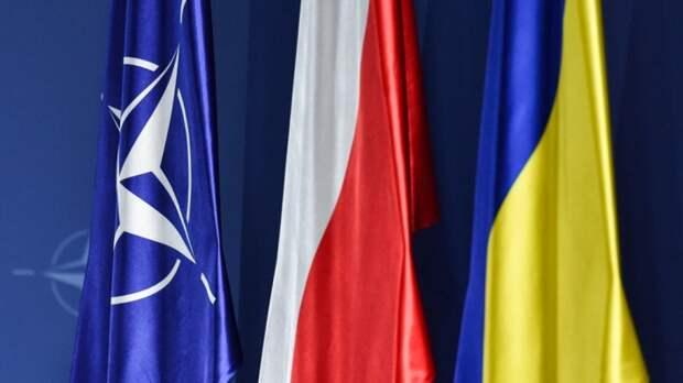 Баранец предсказал ответные шаги Москвы в случае вступления Украины в НАТО