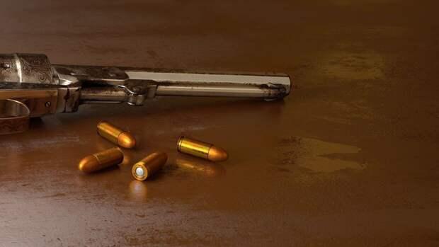 Эксперты поддержали ужесточение правила оборота гражданского оружия