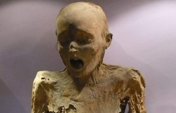 Мумии Гуанахуато: печальная история эпидемии холеры в Мексике