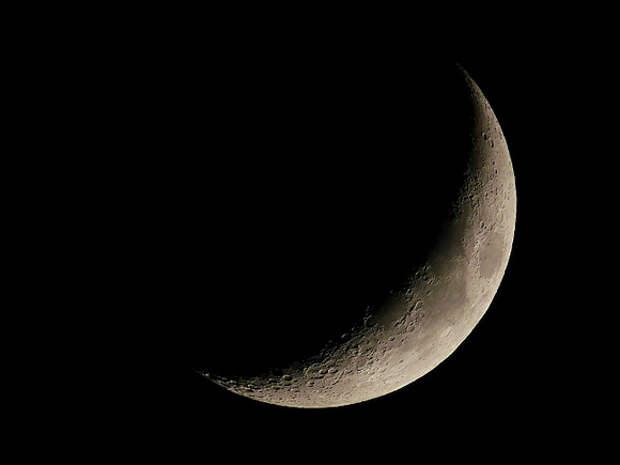 SpaceX выиграла контракт NASA по высадке астронавтов на Луну
