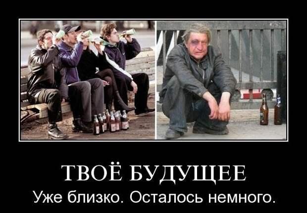 Смешные картинки про алкоголиков (15 фото)