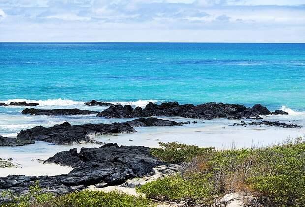 Леонардо Ди Каприо пообещал выделить $43 миллиона на восстановление Галапагосских островов