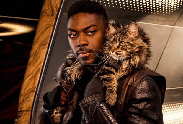 Star Trek: Discovery EP Answers Our Burning Questions About Season 3's Breakout Star: Grudge the Cat
