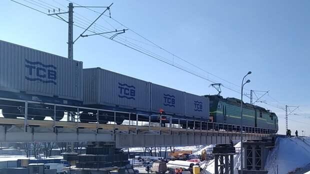 Грузовой поезд насмерть сбил сидящего на путях жителя Выборга