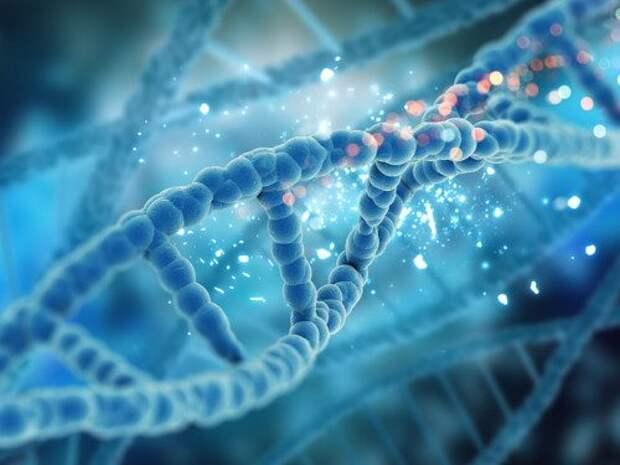 Генетический код: как его можно поменять силой мысли?