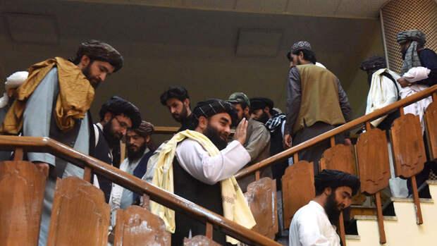 """""""Би-би-си"""": талибы раскололись на две враждующие фракции"""