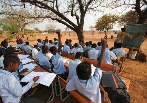 Если ваши дети отказываются идти в школу, покажите им эти фотографии прикол, школа, юмор