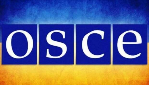 ВОБСЕ призвали Украину допустить российских наблюдателей навыборы   Продолжение проекта «Русская Весна»