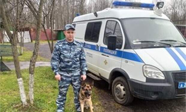 В Череповце служебная собака нашла пропавшего ребенка