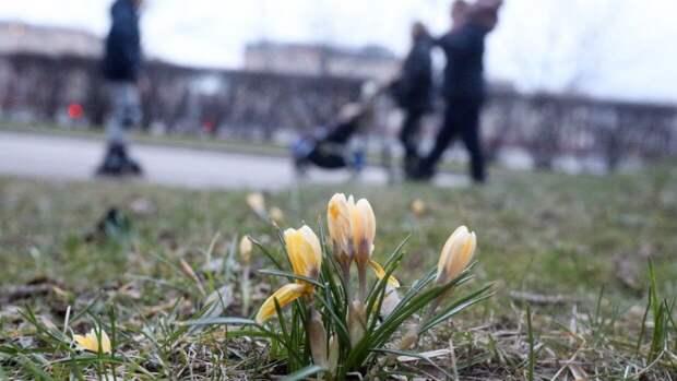 Минтруд РФ не планирует делать майские праздники продолжительными на постоянной основе