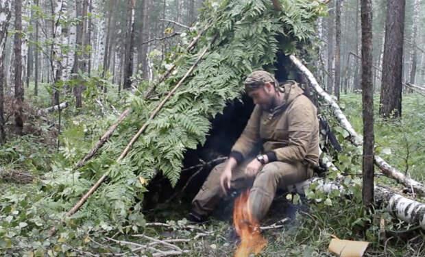 Поставил лагерь и пришел медведь