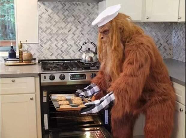 Йети даже умеет готовить печенье.