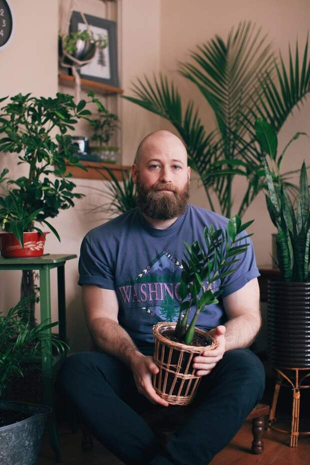 Домашние растения: 15 фотоаргументов за