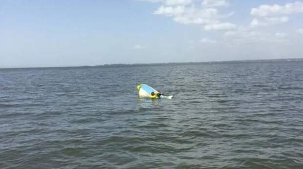 Собака 11 часов плыла к берегу, чтобы позвать на помощь