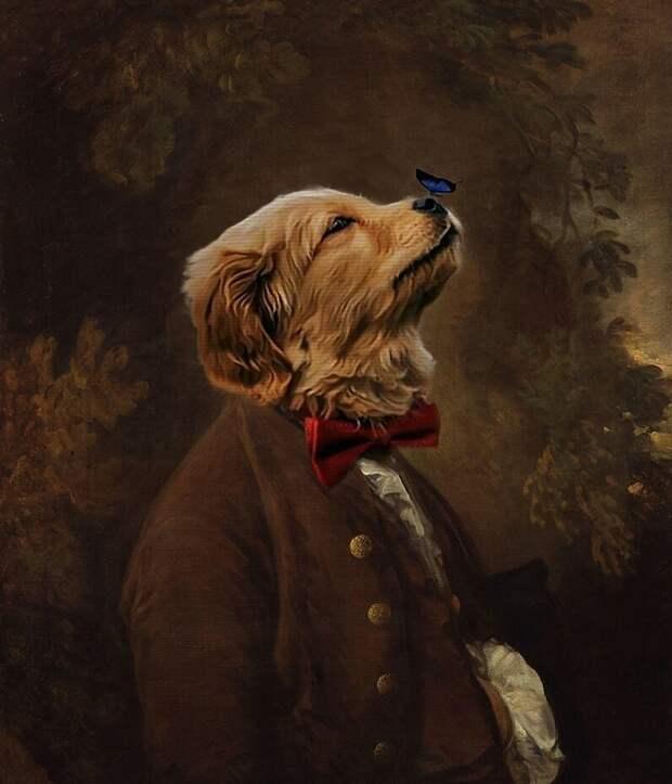 Кадр, достойный стать портретом сира Пёселя I и его верного спутника! бабочка, баттл, милота, пес, подборка, собака, фотошоп