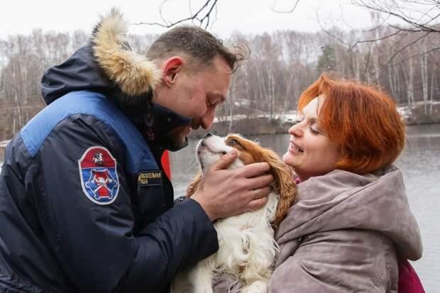 Тонкий лед: как пса Алена с хозяйкой из Москвы-реки спасали