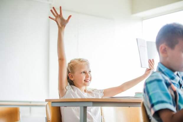 У меня возбудимый ребенок, как подготовить его к школе: отвечает психолог