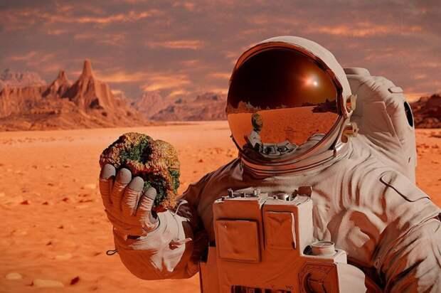 С помощью аппарата NASA ученые смогли заглянуть внутрь Марса и узнать нечто интересное