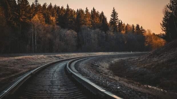 Девочка-подросток из Ярославля погибла на железнодорожном мосту, делая селфи