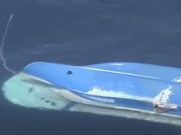 Капитан сухогруза «Амур» ответит за гибель японских рыбаков дважды