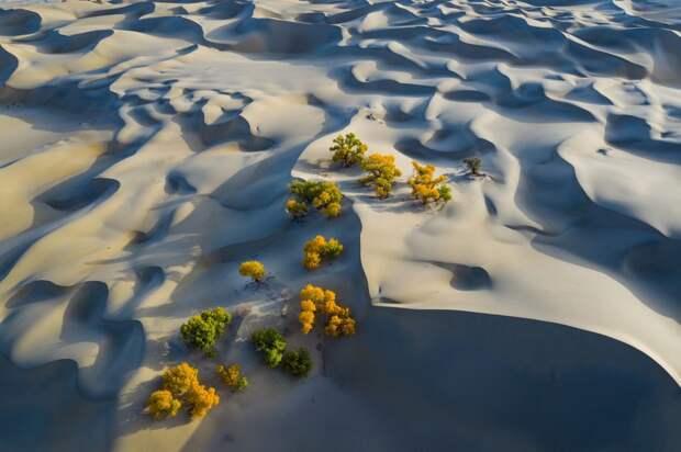 18 невероятной красоты фотографий, которые стали победителями 5-го ежегодного конкурса