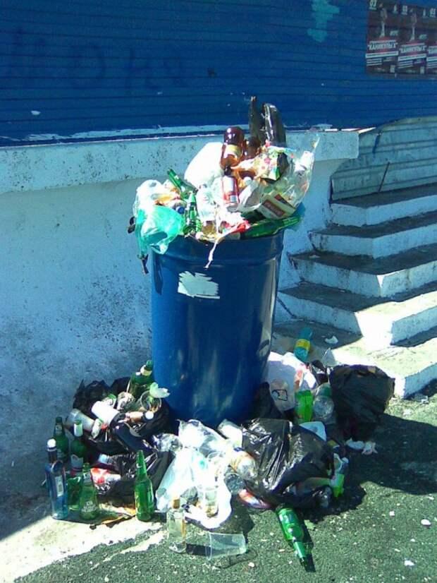 Море в Севастополе всё примет: и мусор, и испражнения? (фото)