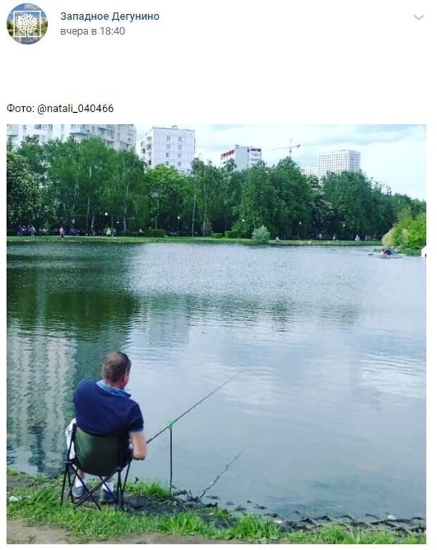 Фото дня: рыбалка в парке «Ангарские пруды»