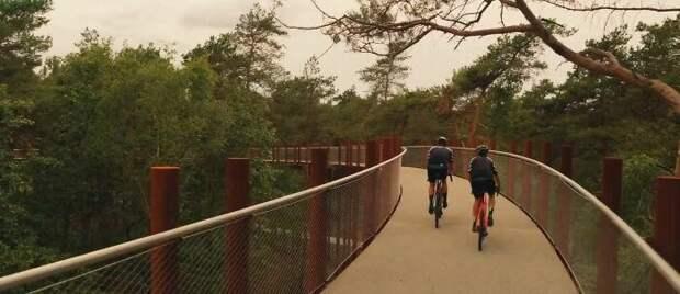 Велодорожка вБельгии позволяет прокатиться полесу навысоте 10 метров над землей