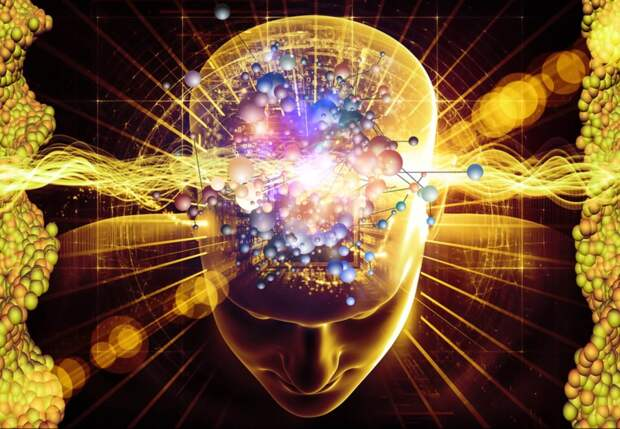 Ученые проследили движение мысли в мозгу человека!