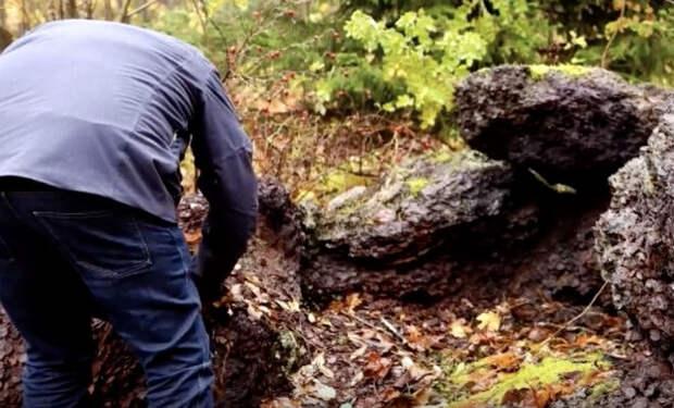Грибники думали, что наткнулись на гору камней. Копнули и оказались наедине с кладом золота