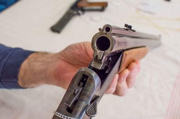 Госдума приняла закон об усилении контроля за оборотом оружия