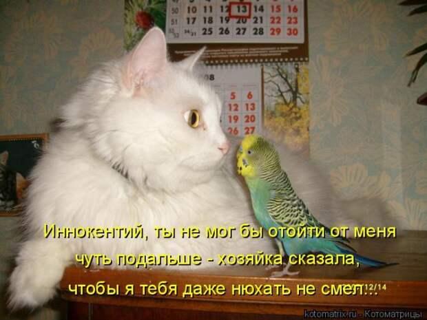 1464560134_36