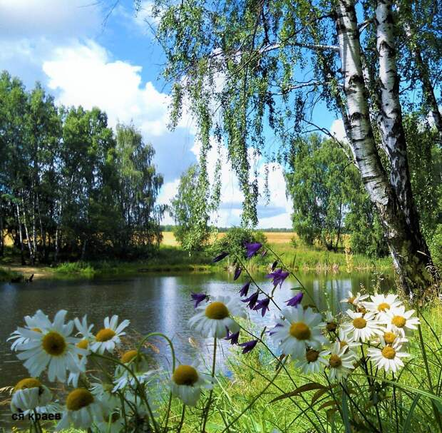 Красоты России (#609)