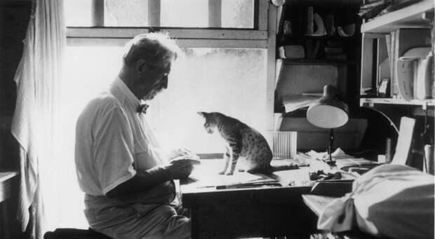 Айболит ХХ века: Эмоциональный интеллект философа, музыканта и гуманиста Альберта Швейцера